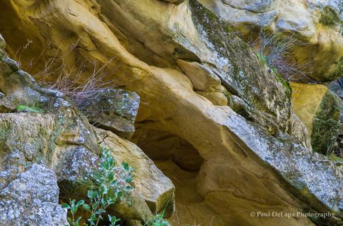 Salisbury Canyon #3