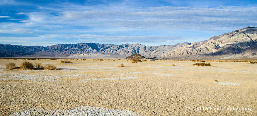 Panamint Valley #4
