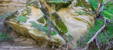 Salisbury Canyon #4