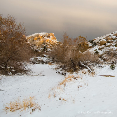 Winter #10