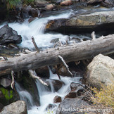 Big Pine Creek #3
