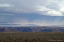 Northern Arizona #9