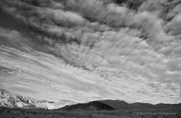 Death Valley bw #4