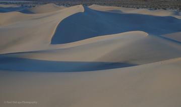 Mesquite Dunes #7