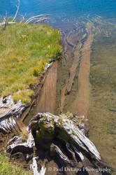 Big Pine Creek #16