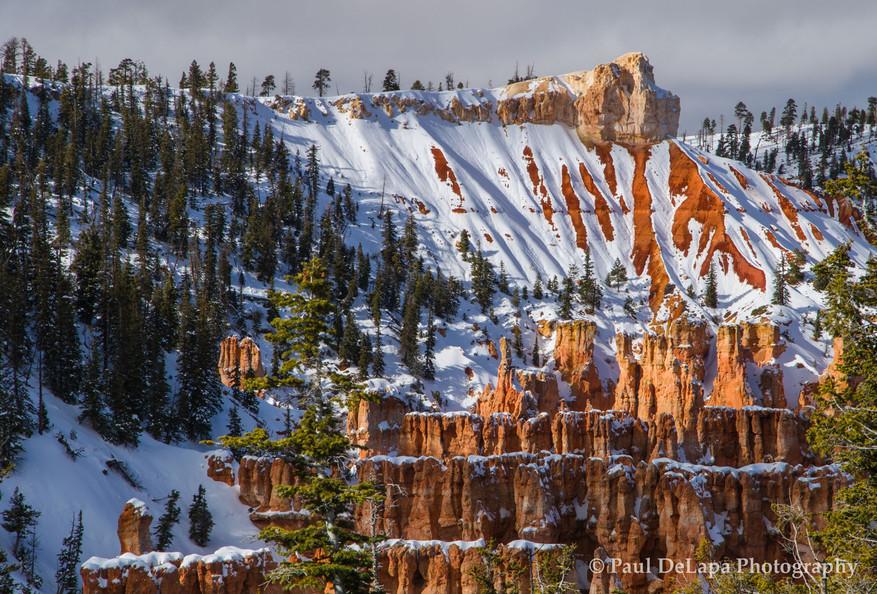 Bryce Canyon Winter #14