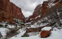 Zion Winter #24