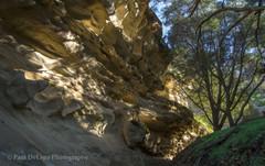 Salisbury Canyon #6