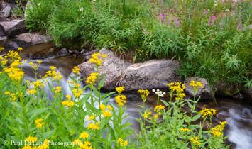Lamarck & Wonder Lakes #9