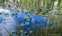 Olaine Lake #9