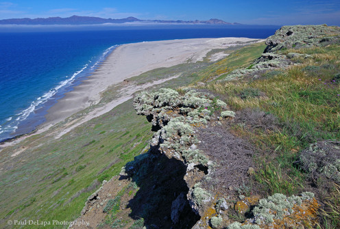 Santa Rosa Island #6