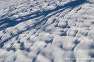 Snow #13