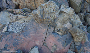 Panum Crater #12