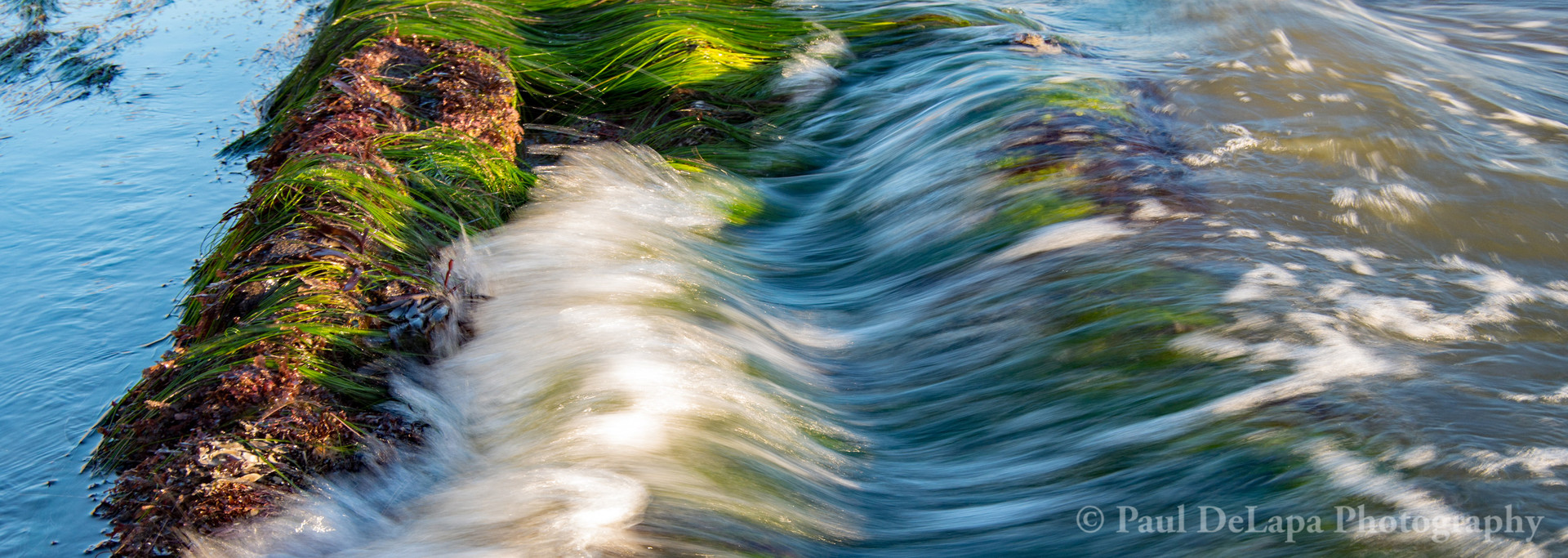 Water Movement #20