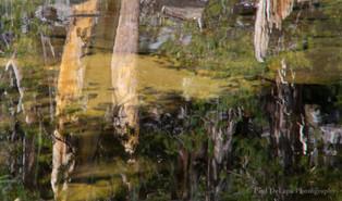Big Pine Creek #17