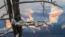 Grand Snow-Canyon #9