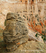 Bryce Canyon #10
