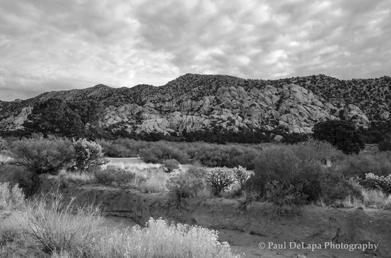 Mohave bw #5