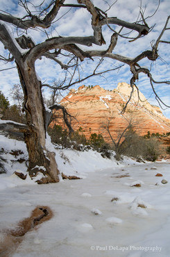 Zion Winter #3