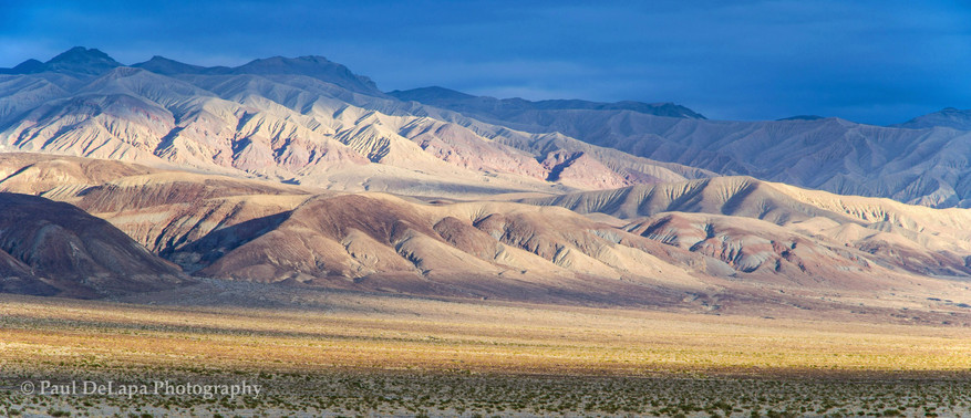 Panamint Valley #5
