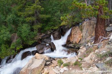 Big Pine Creek #19
