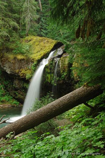 Iron Creek Waterfall #1