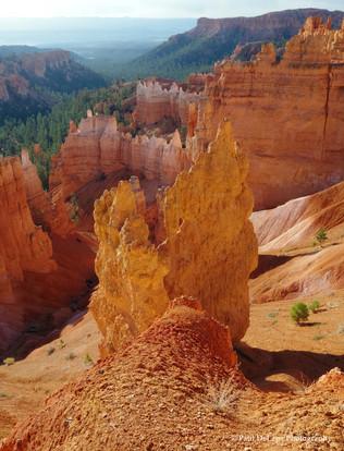 Bryce Canyon #5