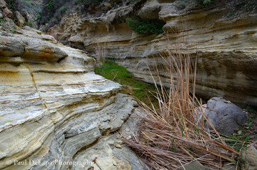 Water Canyon #7