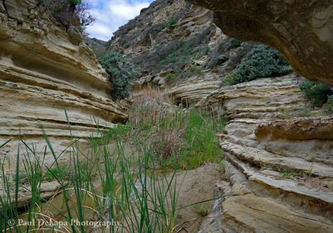 Water Canyon #13
