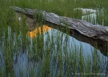 Kearsarge Lakes #2