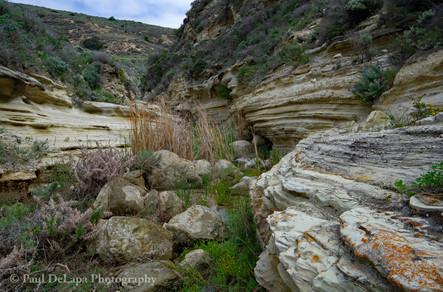 Water Canyon #4