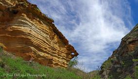 Lobo Canyon #19