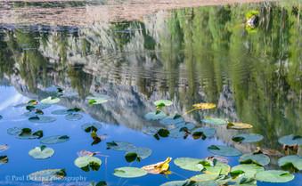 Olaine Lake #1
