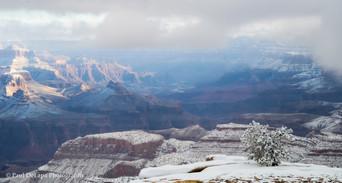 Grand Snow-Canyon #1