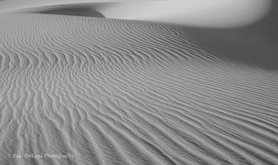 Death Valley bw #8