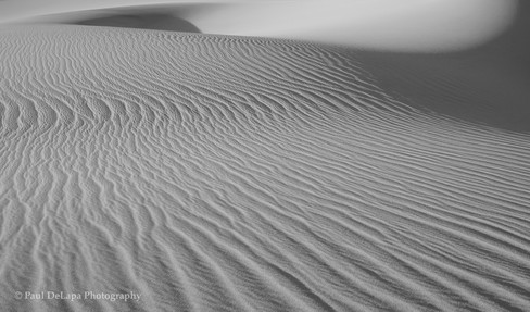 Death Valley bw #8