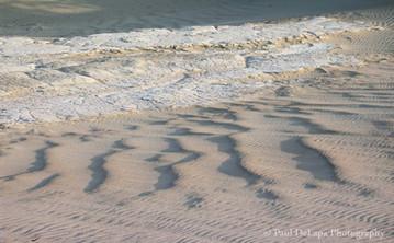 Mesquite Dunes #8