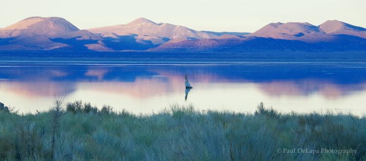 Mono Lake #6