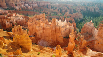 Bryce Canyon #15