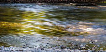 Water Movement #15