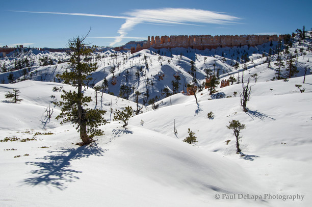 Bryce Canyon Winter #5