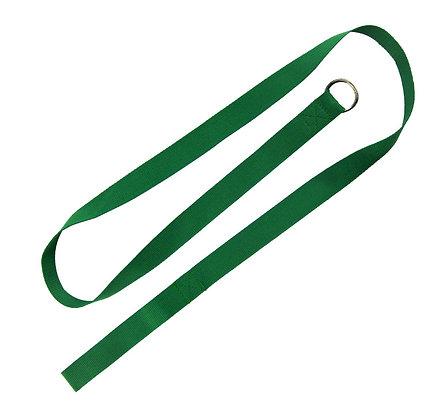 Pet Slip Leash