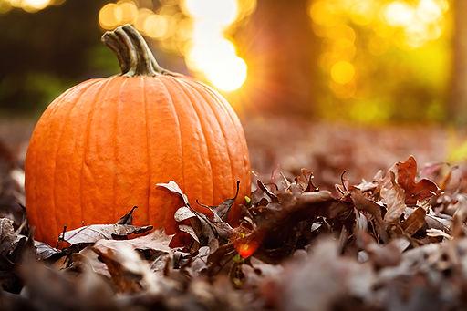 fall-pumpkin-2.jpg