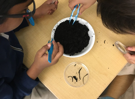Scientists and Detectives, and Compost, Oh My!