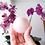 Thumbnail: Selenite Crystal Ball