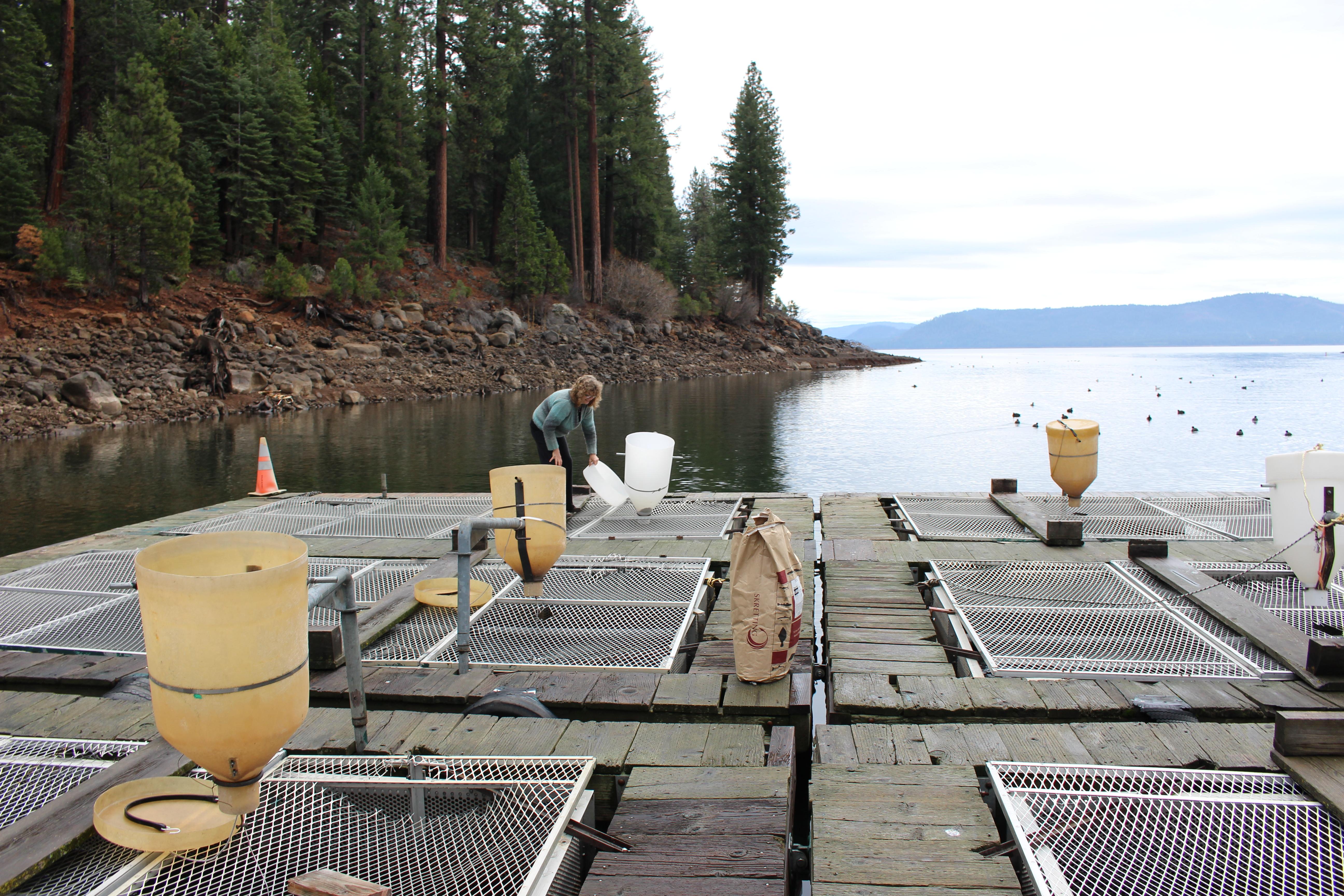 Fish On | Lake Almanor Lodging & Guide Service