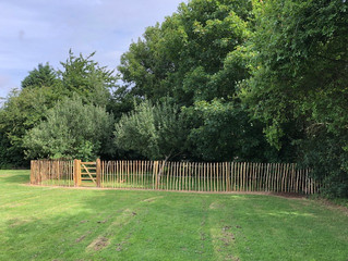 Forest School area on Gretton Playing Field fenced off