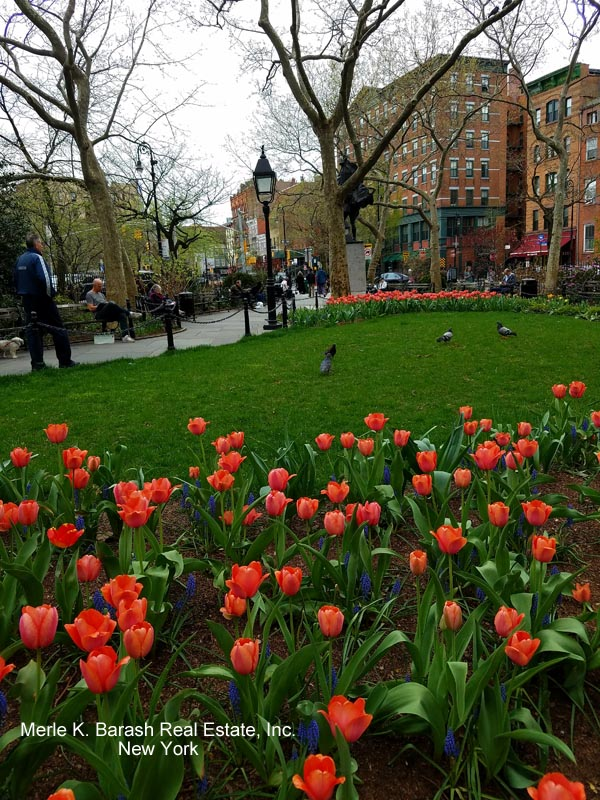 Abington Square Park watermarked