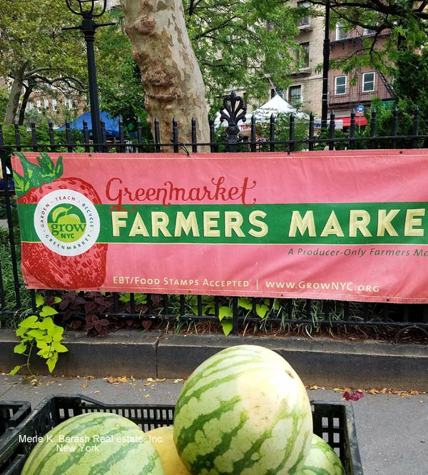 Green Market. waatermarked