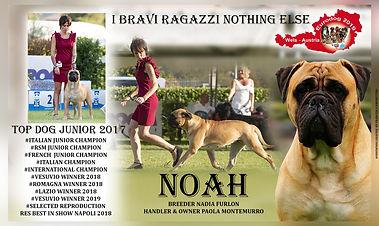 PRONTO NOAH.jpg